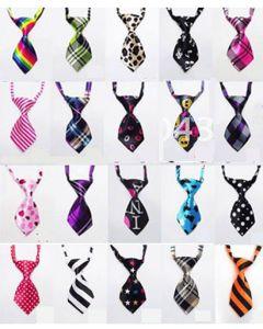 Cravate pour animaux