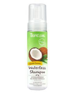 shampoing sans rincage pour chien hypoallergène noix de coco