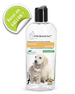 shampoing concentré chien