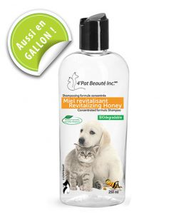shampoing miel pour animaux